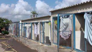 Aumentan las adopciones y dismuyen los abandonos en el albergue municipal de Torrevieja
