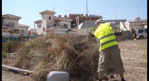 Desempleados agrícolas limpian y desbrozan espacios públicos en Bigastro