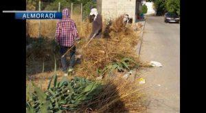 El ayuntamiento de Almoradí contrata a 35 peones agrícolas durante tres meses