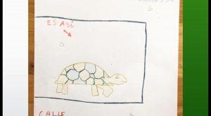 El cartel dibujado a mano por una niña de Cox buscando a una tortuga se vuelve viral