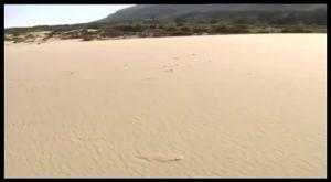 Medio Ambiente regenerará las dunas de Guardamar con un presupuesto de 1,5 millones de euros