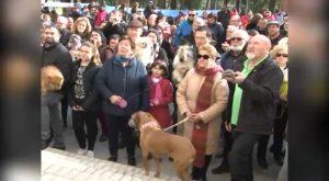 El barrio de San Antón vuelve a congregar a cientos de personas en su festividad