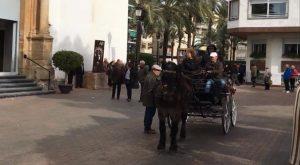 Dolores celebra la romería de San Antón y la bendición de animales