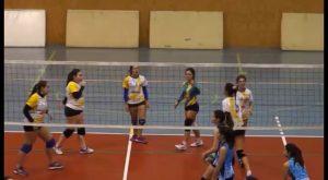 El equipo juvenil de voleibol femenino de Catral, el único de la Vega Baja que consigue la victoria