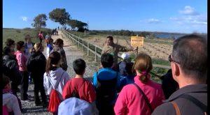 45 personas de la Vega Baja y Alicante celebran el Día del Humedal en las Lagunas de Torrevieja