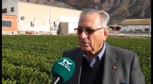 """La situación agrícola comarcal pasa por un momento """"aceptable"""""""