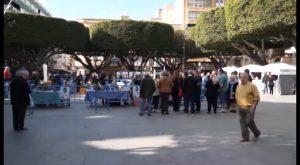 La III Semana de la Alcachofa de Almoradí llega casi 50 años después