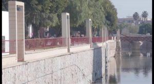 Detenida en Rojales joven reclamada por numerosos hurtos