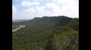 Cambiemos Orihuela se adscribe a las alegaciones de Amigos de Sierra Escalona