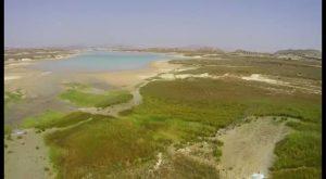 El Embalse de la Pedrera es el pantano de la que menos agua recibe del Trasvase