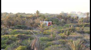 """Arden 1,5 hectáreas de la pinada de Guardamar en un incendio """"presuntamente intencionado"""""""