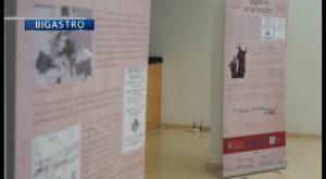Bigastro inaugura una muestra permanente sobre el ciéntifico del siglo XVIII Tomas Villanueva