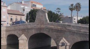 Descubren en Rojales los restos de un antiguo puente de madera situado sobre el río Segura