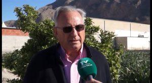 ASAJA pide al ministerio que incluya el limón en la reducción de módulos del IRPF