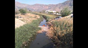 Medio Ambiente procede a la retirada de cañas y envases en el río a la altura del puente de Salesas