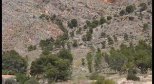 Rescatan a un escalador accidentado en la sierra de Redován