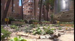 Se inaugura el primer huerto ecológico poético de la comarca en el IES El Palmeral