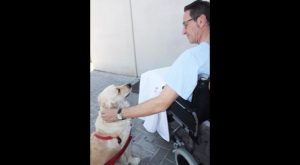 El Hospital de Torrevieja permitirá visitas de mascotas a los pacientes ingresados