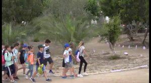 Orihuela inaugura un Palmetum con la mayor colección de palmeras datileras del mundo