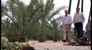 Orihuela recibe una subvención de fondos europeos para la mejora de El Palmeral