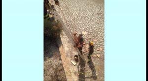 Rescatan en Benijófar a un perro que había caído a una balsa de 8 metros sin agua
