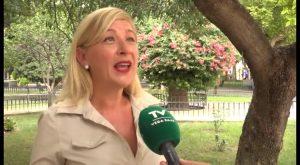 El PP de Callosa denuncia la gestión realizada por el tripartido en cuanto al minibus público