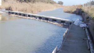 La CHS trabaja en la limpieza y despeje del tramo de la Vega Baja del Río Segura