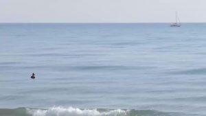 52 pescadores participan en el VI Open de pesca fondeada El Tuso de Guardamar
