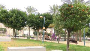 La UMH asesorará a Orihuela para reorganizar parques y jardines