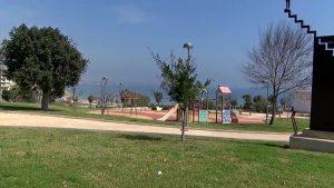 El Ayuntamiento de Pilar de la Horadada trabaja para recuperar las zonas verdes abandonadas