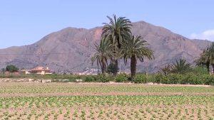 Los agricultores, cautelosos con la sentencia sobre el caudal hidrológico del Tajo
