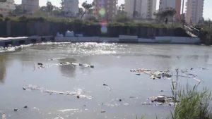 El Síndic abre investigación ante las acumulaciones de plásticos en la desembocadura del río
