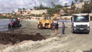 Orihuela pone a punto sus playas