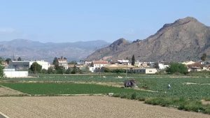 Vega Baja Sostenible se constituye como coordinadora para conseguir un plan de acción territorial