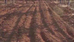 Más de 6.000 personas se interesan por la gestión de los residuos en la comarca