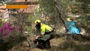 Con la mirada puesta en el verano: San Miguel de Salinas ya cuenta con bomberos forestales