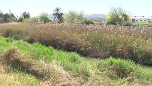 Grupos de infantil del colegio Jesús María San Agustin trabajan por un río Segura vivo