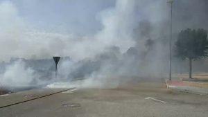 Arden 3.000 metros cuadrados de matorral y cañar en Cox