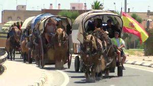 Carreteros de toda la provincia disfrutan de una ruta por la Vega Baja