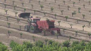 Las ITV móviles para vehículos agrícolas y ciclomotores visitarán en septiembre la comarca