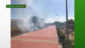 El fuego afecta a una superficie de 400 metros cuadrados de pasto y matorral en Pilar de la Horadada