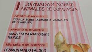 Almoradí presenta un abanico de actividades destinadas a las mascotas