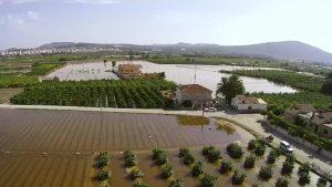 Los agricultores critican no haber recibido «ni un euro» tres meses después de la DANA