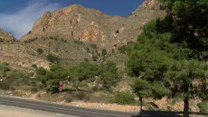 La consellería se niega a atajar el problema del Cactus Arizona en la Sierra de Orihuela