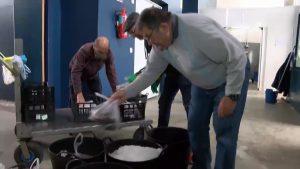 Más de 200 kilos de pescado para las familias necesitadas de Guardamar