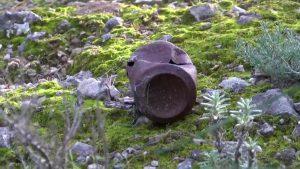 Más protección y cuidado en el monte de Benejúzar