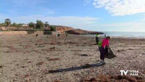 Comienza la limpieza en las playas de Orihuela Costa tras el paso de la borrasca Gloria