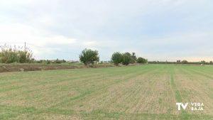ASHA rechaza con alegaciones la ubicación de la nueva depuradora de Almoradí