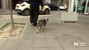 La Policía de Almoradí trabaja en el control de salidas con los perros