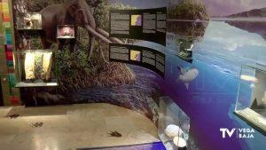 El plan de desescalada impulsa la apertura de museos y bibliotecas de la comarca